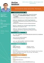 Fichier PDF cv amine marah 1 2