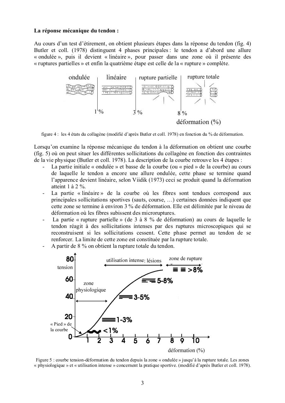 Les limites du stretching 2 2003oct.pdf - page 3/20