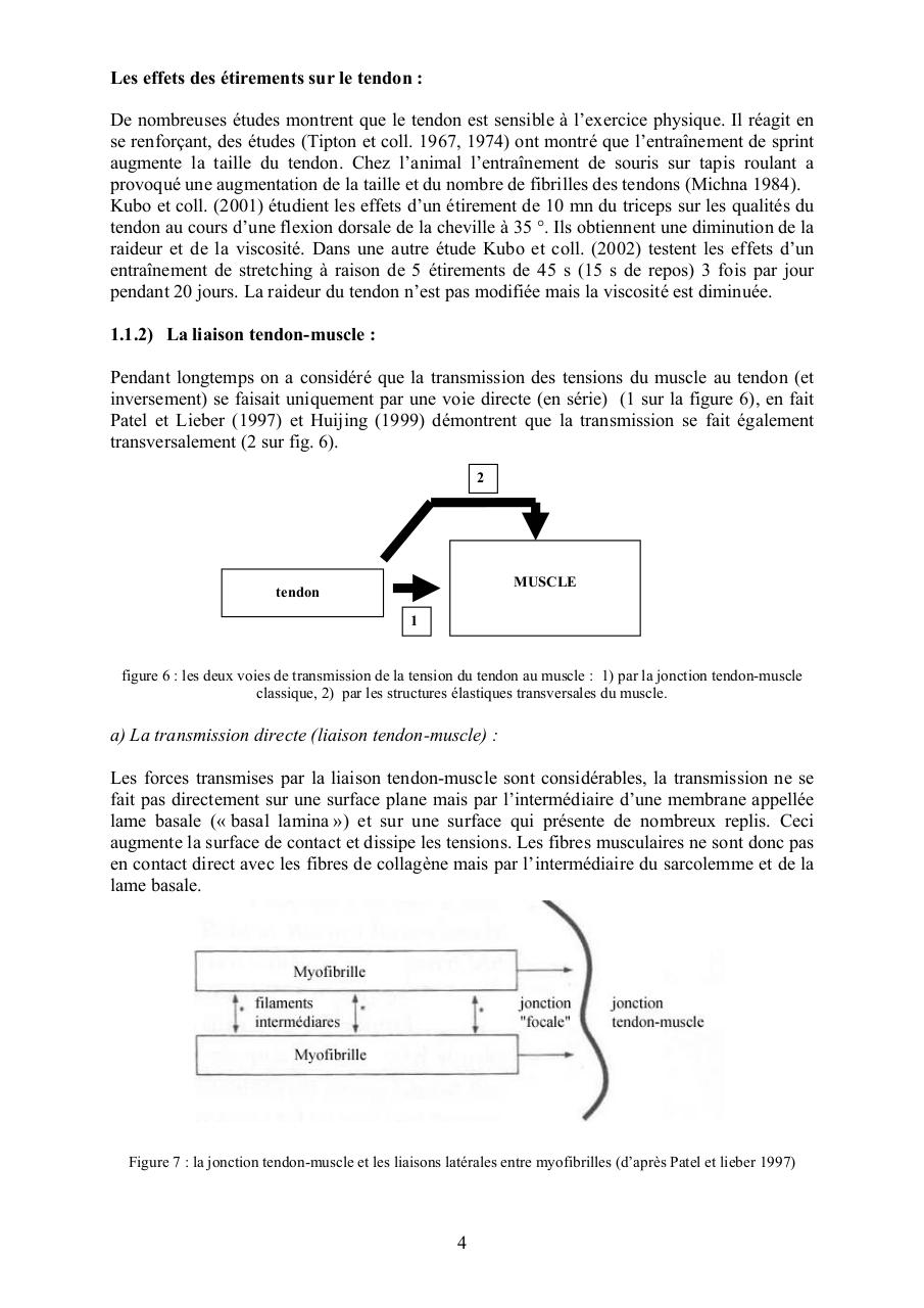 Les limites du stretching 2 2003oct.pdf - page 4/20