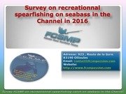 survey on seabass spearfishing in the channel 2016