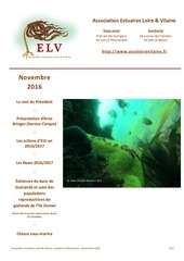 newletter novembre 2016 v2