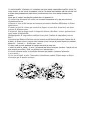 Fichier PDF fic
