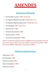 Fichier PDF amendes arma3