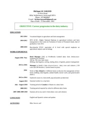 Fichier PDF cv hicham le grand english