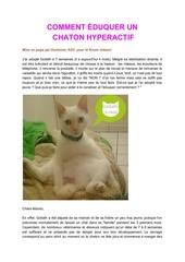 comment eduquer un chaton hyperactif