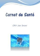 carnet de sante jon snow