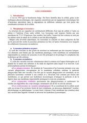 Fichier PDF lysosomes