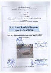Fichier PDF pges2