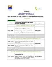 Fichier PDF programme formationfev17