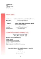 pdf cv ok