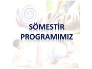 somestir program
