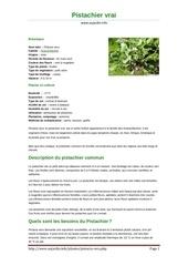 Fichier PDF pistachier vrai