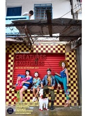 creatures exotiques p 1