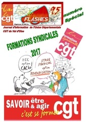 Fichier PDF flashes special formation 2017