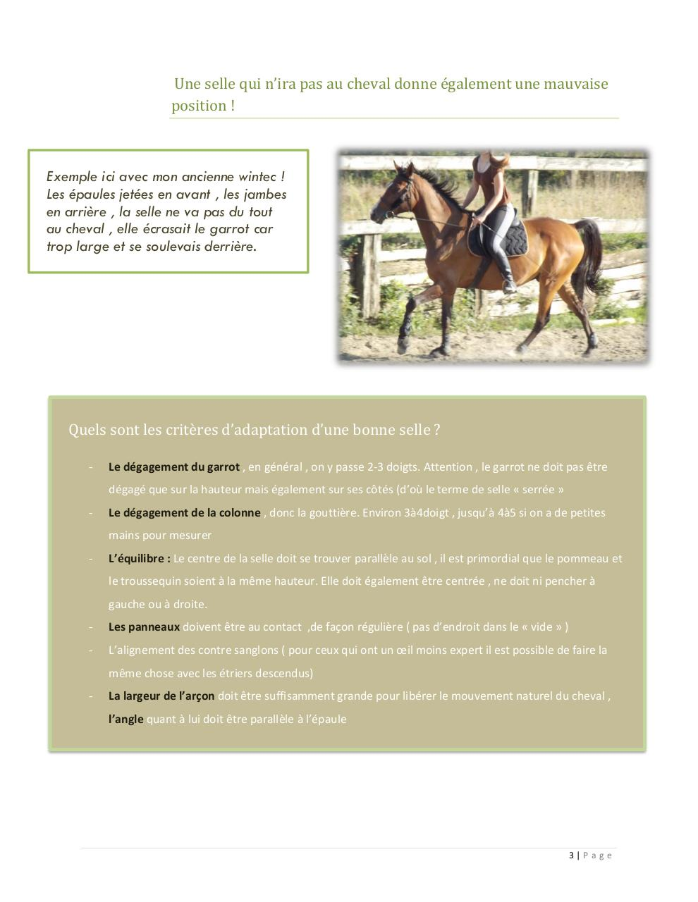 Saddle fitting article.pdf - page 3/4