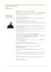 Fichier PDF c v charles baudouin 2017 da