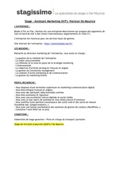 Fichier PDF horizon marketing