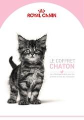 cp chaton