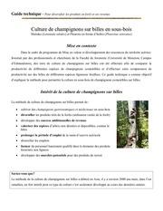 culture de champignons sur billes en sous bois