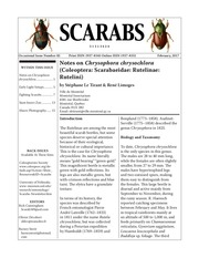scarabs 82