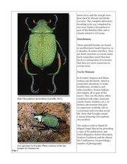 scarabs_82.pdf - page 2/22
