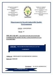 departement de securite industrielle