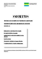 Fichier PDF ministere de l