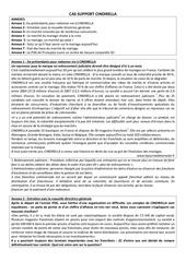 Fichier PDF exercice cindirella diag strategique