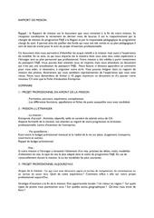 Fichier PDF rapport de mission 1