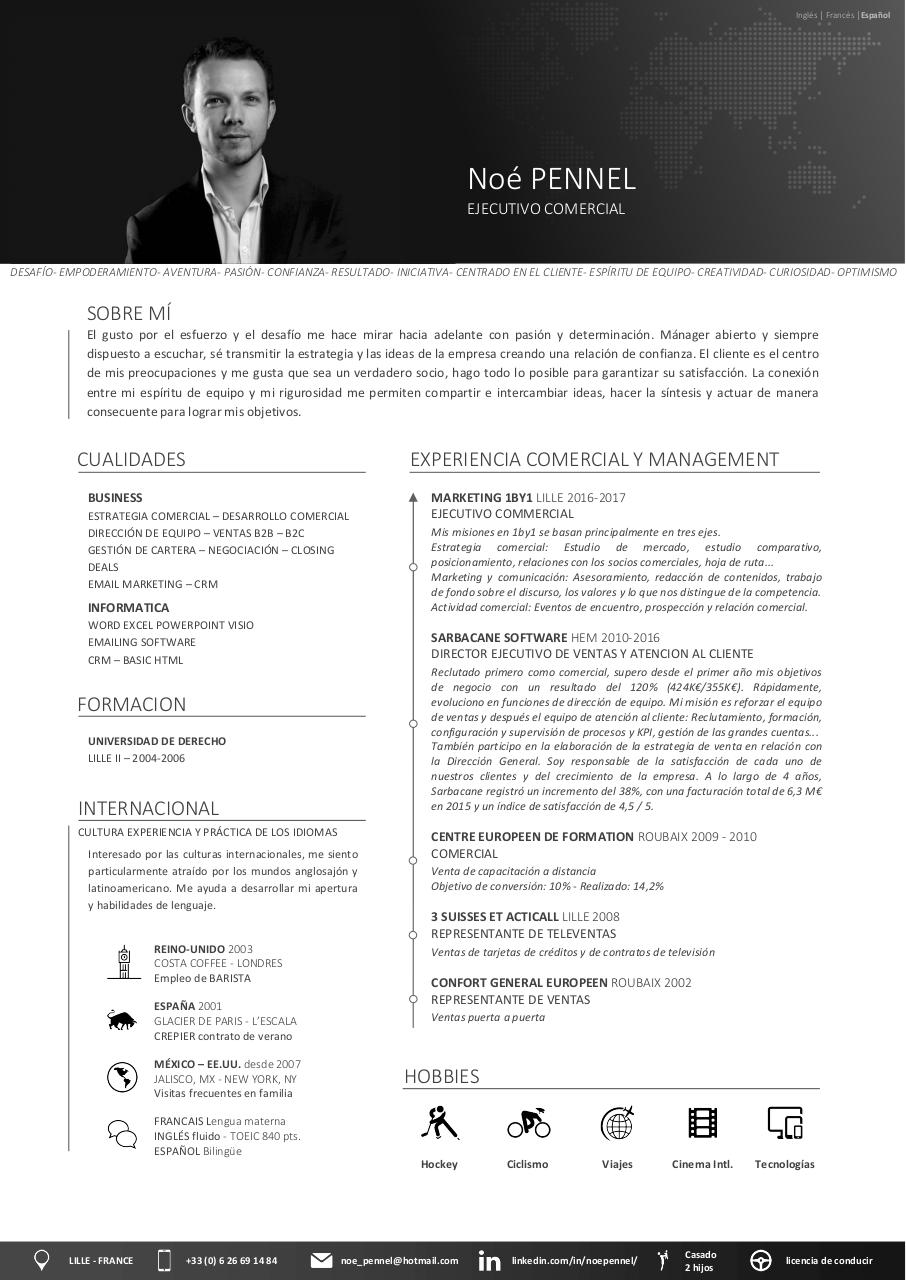 Aperçu du document CV NP 2017 ES c.pdf - page 1/1