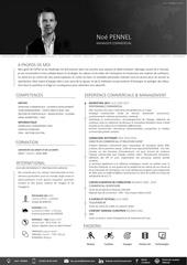 Fichier PDF cv np 2017 fr c