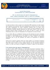 Fichier PDF la protection des droits fondamentaux dans l ue