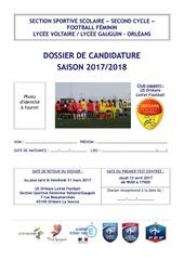 dossier de candidature 2017 2018 ss voltaire gauguin filles