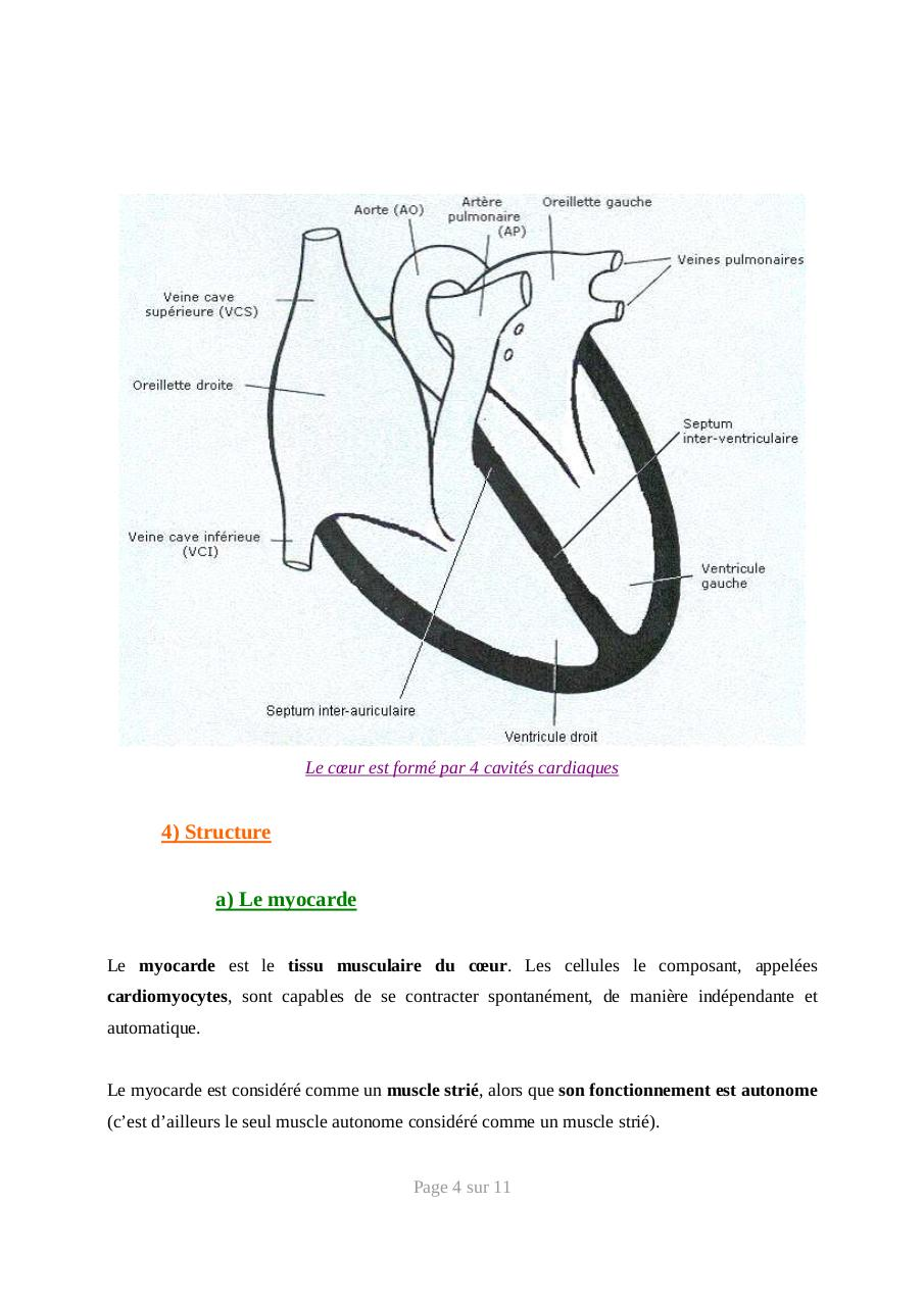 systeme-cardiovasculaire-anatomie.pdf - page 4/11