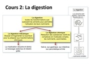 cours 2 la digestion planches 1