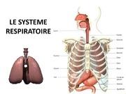 Fichier PDF cours 4 le systeme respiratoire planches