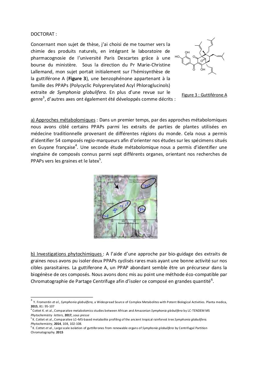 resumepourmcf.pdf - page 3/10