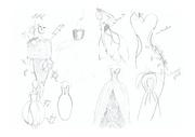 Fichier PDF stylisme recherche forme