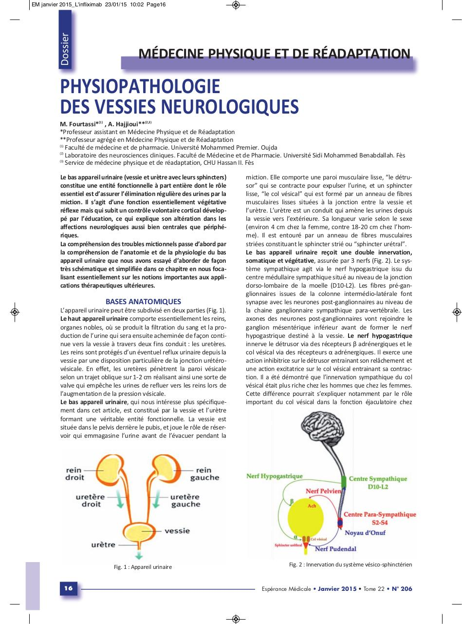 Aperçu du document Physiopathologie vessies neurologiques.pdf - page 1/3