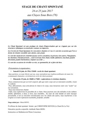 Fichier PDF flyer stage chant spontane