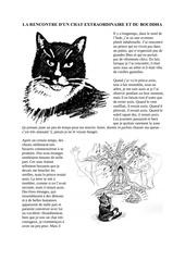 la rencontre d un chat extraordinaire et du bouddha