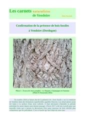 bois fossiles vendoire dordogne d raymond 2017
