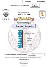 52a ft ms onglets sommaire p1