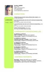 Fichier PDF jordan larue c v