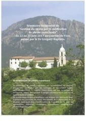 seminaire mpc vico juin 2017