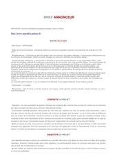 Fichier PDF briefannonceur