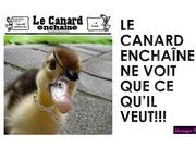 Fichier PDF ce que le canard ne dit pas