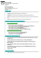 Fichier PDF cvpdf