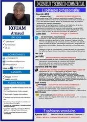 Fichier PDF ingenieur technico commercial