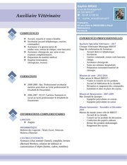 Fichier PDF cv s brias